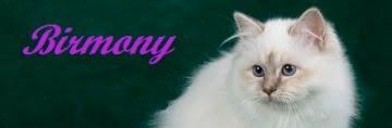 http://www.birmony.it/home/